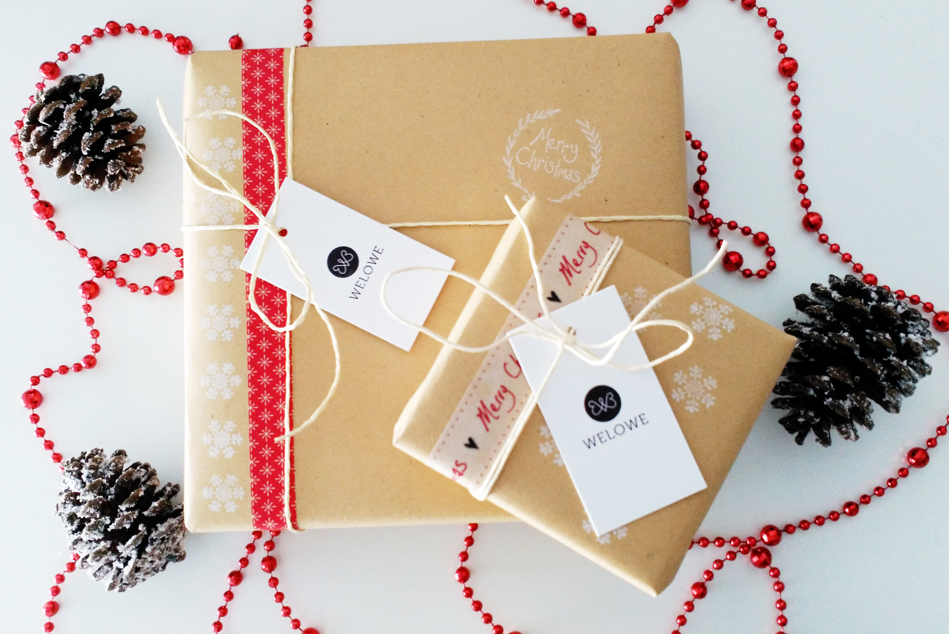 packaging Welowe Navidad